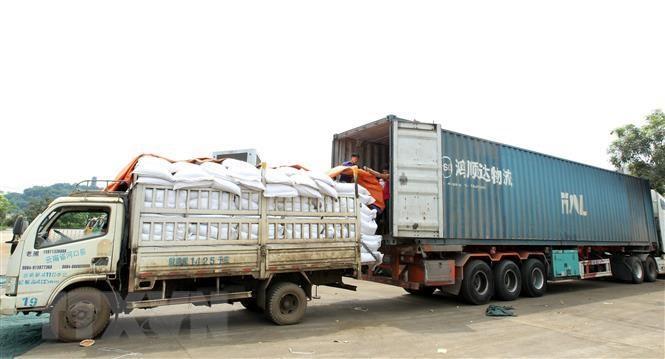 Quy định thủ tục nhập khẩu hàng phân bón